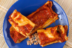 Italian Cannelloni with Pork Meat Royalty Free Stock Images