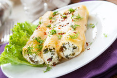Italian cannelloni with soft cheese Stock Photos