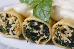Italian cannelloni stuffed with spinach and bechamel macro Stock Image