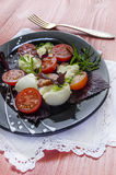 Italian caprese salad with fresh basil leaves, tomato and  mozzarella  on red wooden table Royalty Free Stock Photo