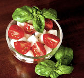 Italian caprese salad: mozzarella, tomatoes and basil Stock Image