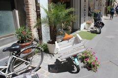 Italian cargo bicycles Stock Photos