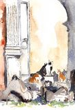 Italian cats in roman ruins ink and watercolor sketch. Italian stray cats in roman ruins ink and watercolor. Colums, old wall, red, black and white kitties stock illustration