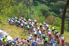 Italian championship race ACSI mtb Royalty Free Stock Photos