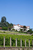 Italian charming villa in vineyard Royalty Free Stock Photo