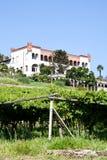 Italian charming villa in vineyard. Tuscany, Italy. Italian luxury villa in the country, close to a Lambrusco vineyard Stock Image