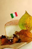 Italian cheese Royalty Free Stock Photo