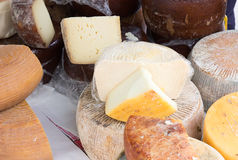 Italian cheese Royalty Free Stock Image