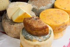 Italian cheese Stock Image