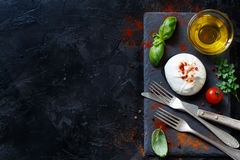 Italian cheese burrata with bread, vegetables and herbs Royalty Free Stock Images