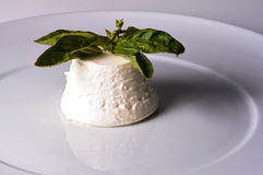 Italian cheese ricotta Royalty Free Stock Photo