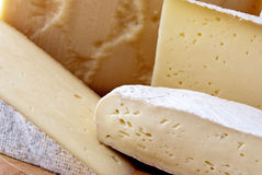 Italian cheeses. A choice of italian cheeses Royalty Free Stock Image