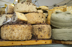 Italian cheeses. Color image Royalty Free Stock Photo
