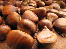 Italian chestnut Stock Photo