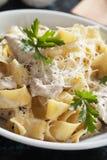 Italian chicken alfredo pasta Stock Image