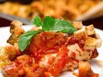 Italian chicken mozarella bake Stock Photography