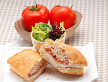 Ciabatta panini sandwich with parma ham and tomato. Italian ciabatta panini sandwich with parma ham and tomato Royalty Free Stock Photography