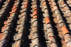 Italian Clay tiles Stock Images