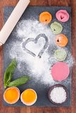 Italian colorful homemade ravioli Stock Photos