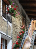 Italian Colorful Stairway. A stairway of an Italian home lined with flowers Stock Photos