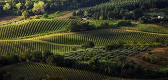 italian country Stock Image