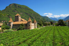 Italian country castle. A view of a small Italian castle in the country, surrounded by planted fields and mountains royalty free stock images
