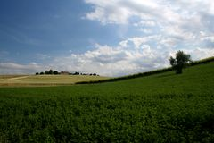 Italian countryside. Open countryside or farmland in Tolentino, Italy Royalty Free Stock Image