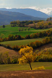 Italian countryside. Beautiful Italian countryside in Emilia Romagna region in autumn royalty free stock photography