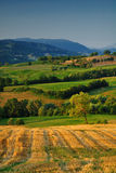 Italian countryside. Beautiful summer landscape of Parma countryside, Italy stock image
