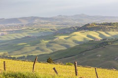 Italian countryside with fields and valleys Stock Photography