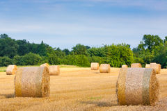 Italian countryside panorama. Round bales on wheat field Royalty Free Stock Photo