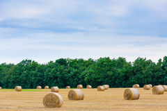 Italian countryside panorama. Round bales on wheat field Royalty Free Stock Images