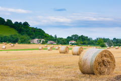 Italian countryside panorama. Round bales on wheat field Royalty Free Stock Photo