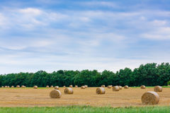 Italian countryside panorama. Round bales on wheat field Royalty Free Stock Photos