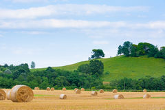 Italian countryside panorama. Round bales on wheat field Stock Images