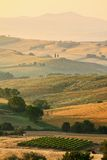 Italian countryside in Tuscany Royalty Free Stock Photography