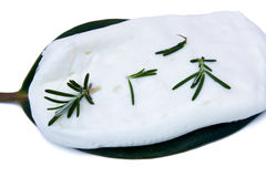 Italian Creamy Cheese. Food & Drinks - Diary Products - Italian creamy cheese Crescenza with rosemary leaves Stock Images