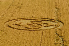 Italian crop circle royalty free stock photography