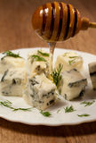 Italian  cuisine cheese  gorgonzolla Stock Photography