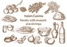 Italian cuisine. risotto with mussels and shrimps ingredients. Vector sketch Royalty Free Stock Photos