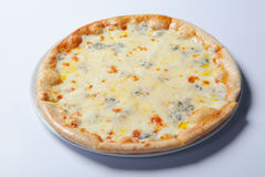 Italian delicious pizza with mushrooms and ham. White background stock photos