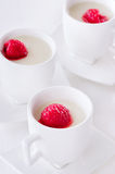 Italian dessert panna cotta Royalty Free Stock Photography