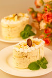 Italian dessert tiramisu with cream and chocolate. Stock Photos