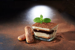 Italian dessert. Tiramisu. On a dark background Royalty Free Stock Photography