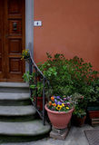 Italian doorway,Tuscany. Doorway and  steps in front of a home in montecatini. a tuscan town Stock Images