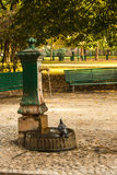 Italian drinking well in a park with water and pigeon. Royalty Free Stock Photography