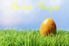 Italian easter greeting text; Yellow easter egg in grass. Italian greeting text wishing happy easter; One painted yellow easter egg in grass with blue background royalty free stock images