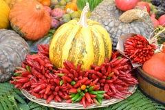 Italian Fall Harvest Royalty Free Stock Photos
