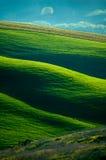Italian fields stock images