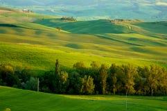 Italian fields royalty free stock photos